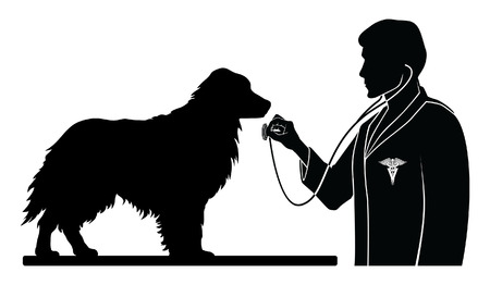 35239631 - veterinarian with dog is an illustration of a design for a vet or veterinarian. includes images of a dog, a veterinarian with stethoscope and a veterinarian symbol
