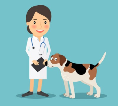 Dog and doctor toon png
