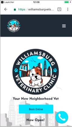 williamsburg iphone screen size